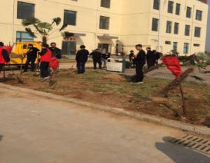 益和亚博唯一官网公司开展3.12植树护绿 学雷锋志愿活动